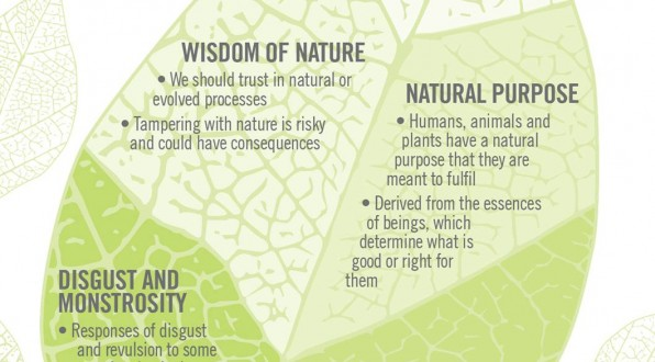 Findings on naturalness