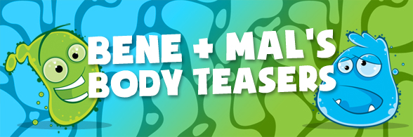 Body teasers banner