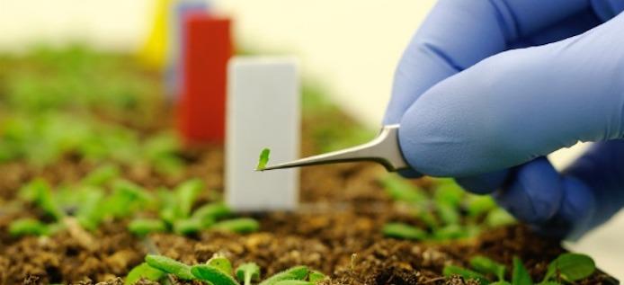 New biofuels technologies